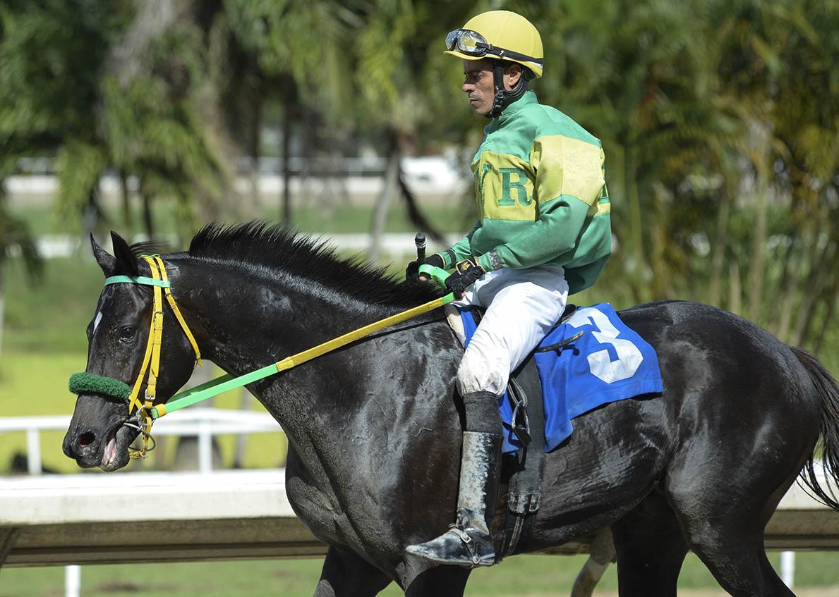 Jockey Juan Carlos Diaz